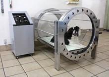 ペットの健康をアスリート待遇でケア、ペット用の高気圧酸素カプセル「Dogs O2」。