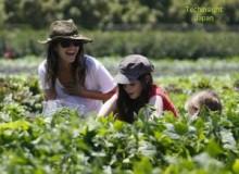 【イタすぎるセレブ達】女優レイチェル・ビルソン、異母妹達と野菜摘みに行く。
