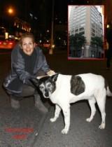 【イタすぎるセレブ達】『ゴシップガール』の女優ケリー・ラザフォード、NYの高級アパートに愛犬の入居を許可される。