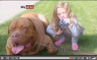 大型犬がファミリーの4歳女児を噛み殺す。画像はSky Newsのスクリーンショット