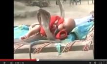 【海外発!Breaking News】スヤスヤ昼寝する赤ちゃんの脇に4匹のコブラ。<動画あり>