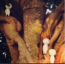 """【エンタがビタミン♪】松井玲奈が""""こまだ""""の写真を投稿。「生で見てみたい」、「ちょっと面白い」と反響。"""