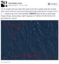 【イタすぎるセレブ達】コートニー・ラブ、マレーシア不明機の残骸を発見か!?