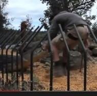 【豪州発!Breaking News】ワニの餌付けショーでガブリッ! 豪・動物園で飼育係が大怪我。