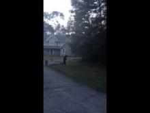 【米国発!Breaking News】クマが自然な直立二足歩行。ニュージャージー州の民家に現れる。<動画あり>