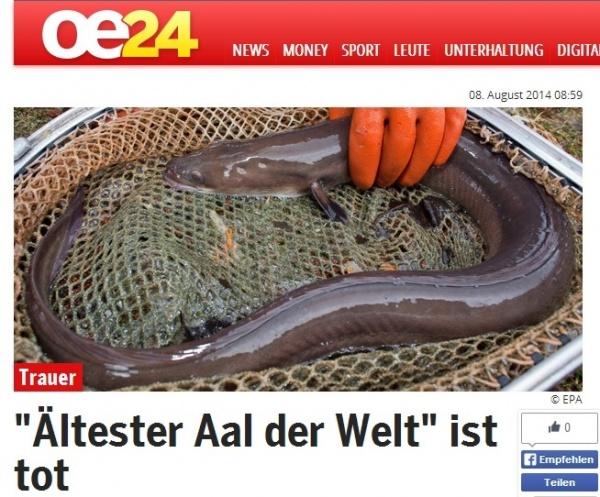 【EU発!Breaking News】世界最高齢のウナギが死亡。155年以上も生き続けていた!(スウェーデン)
