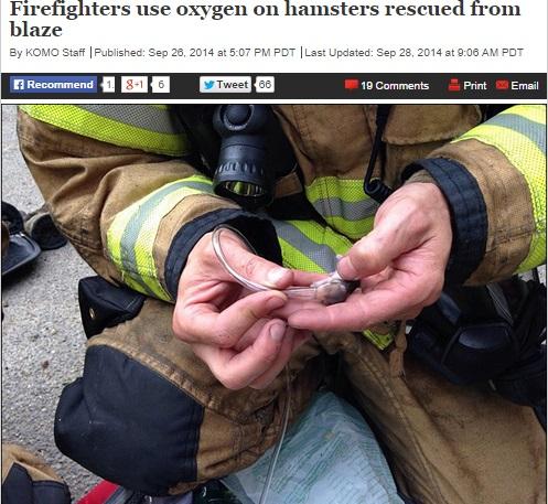 【海外発!Breaking News】ハムスターの赤ちゃんに酸素吸入。消火救出後に小さな命を救った消防士。(米)