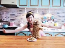 【エンタがビタミン♪】前田敦子がボケまくる。カントリーマアムのTVショー風動画。