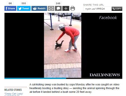 【海外発!Breaking News】猫をエサでおびき寄せ強く蹴り上げていた男、ようやく逮捕。(米)