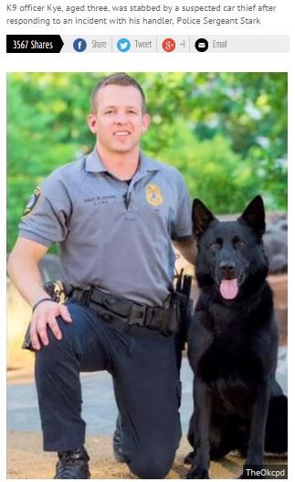 【海外発!Breaking News】殉職に薬物誤吸入。最前線に出る警察犬の犠牲はこんなにも。(米)