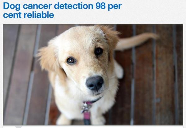【海外発!Breaking News】犬の嗅覚で「前立腺ガン」を発見。精度は98%と英・伊研究チーム。