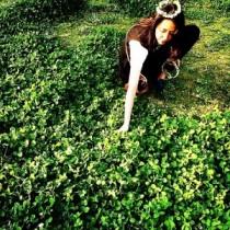【エンタがビタミン♪】長澤まさみ、草原でクローバーの花冠姿を披露。その爽やかさに「天使」「女神様みたい」。
