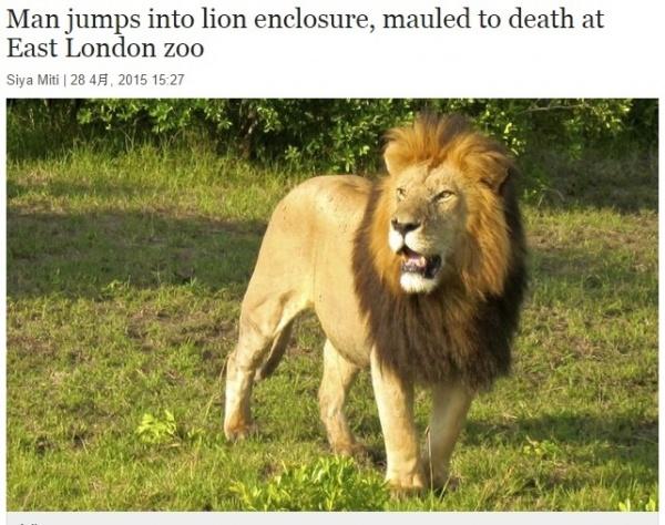 【海外発!Breaking News】動物園で惨劇。ライオンの檻に30代男性が自ら飛び込む。(南ア)