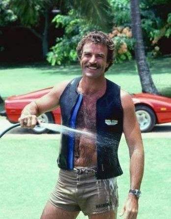 【イタすぎるセレブ達】トム・セレック、水泥棒で訴えられる。消火栓から何度もコッソリと。