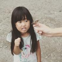 【エンタがビタミン♪】品川祐の娘、パパ似だった顔が「あの女性タレントにそっくり」と評判に。