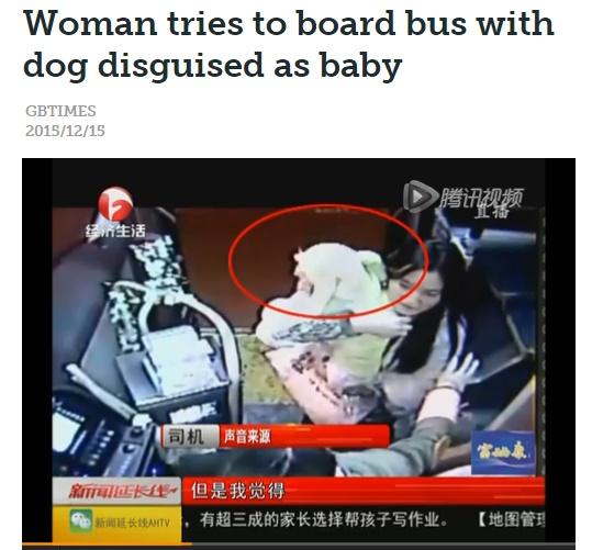 【海外発!Breaking News】「赤ちゃんよ」犬にベビー服を着せバスに乗ろうとした女(中国)