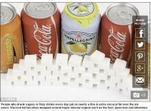 【海外発!Breaking News】「ソーダ税」導入で功を奏すか 毎日の砂糖入り飲料で内臓脂肪30%増(米)