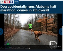 【海外発!Breaking News】ハーフマラソンに飛び入りした犬、見事7位入賞(米)