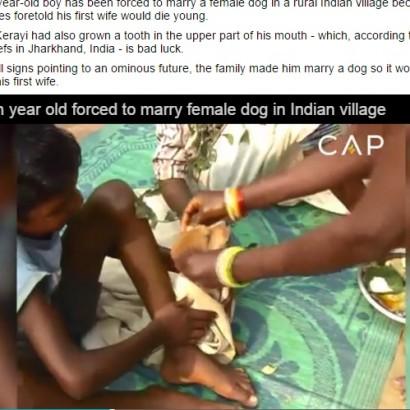 【海外発!Breaking News】インドの7歳男児、メス犬と結婚 「占い」信じる親のせいで