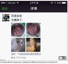 【海外発!Breaking News】絶滅危惧の鳥を調理した男 ウェイボー大炎上で逮捕(中国)