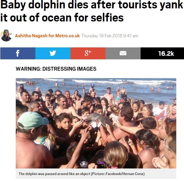 【海外発!Breaking News】イルカの赤ちゃん死亡報道に「待った!」 元から死んでいた可能性大(アルゼンチン)