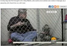 【海外発!Breaking News】瀕死の捨て犬を見放さなかった獣医 朝食も一緒に(米)