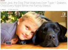 【海外発!Breaking News】血糖値異常をニオイで感知「糖尿病アラート犬」が7歳児の命を救う(米)