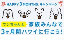 愛犬と家族みんなで行ける 3か月のハワイ旅行が当たるキャンペーン開催中