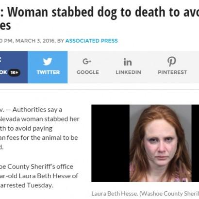 【海外発!Breaking News】獣医に支払うお金がもったいない!? 30歳女、飼い犬を殺害(米)