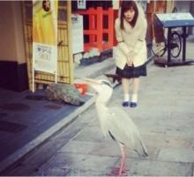 【エンタがビタミン♪】みるきー 街中で鳥に遭遇した表情が「ジワジワくる」