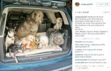 【海外発!Breaking News】年老いた動物ばかりを引き取って暮らす男性「この子たちは愛する家族」(米)