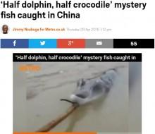【海外発!Breaking News】イルカとワニのハーフ? 東シナ海で奇妙な生き物を捕獲!