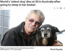 【海外発!Breaking News】超長寿のおばあちゃん犬、30歳で天国へ(豪)