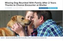 【海外発!Breaking News】2年間探し続けた愛犬、シェルターで奇跡の再会(米)
