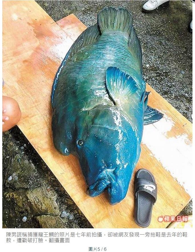 【海外発!Breaking News】絶滅危惧種の魚が殺される ネット炎上、地元住民は落胆(台湾)