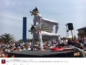 """シューマッハの""""犬タワー""""(出典:https://twitter.com/happyboysryu)"""