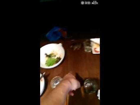 """【海外発!Breaking News】上海の超人気カフェで""""ネズミ騒動"""" テーブル上をチョロチョロ<動画あり>"""