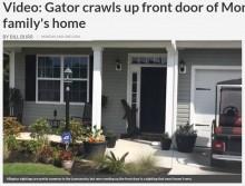 【海外発!Breaking News】礼儀正しいアリゲーター 米・民家の玄関ベルを鳴らそうと…