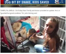 【海外発!Breaking News】毒蛇から7歳女児を守った犬 自ら噛まれつつも(米)