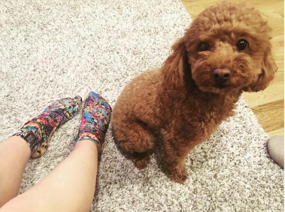 大島優子の足とピッピ(出典:https://www.instagram.com/yuk00shima)