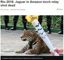 【海外発!Breaking News】リオ五輪 聖火リレー式典に参加したジャガーを射殺(ブラジル)