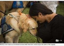 【海外発!Breaking News】銃乱射事件後セラピー犬がフロリダへ 被害者家族らを癒す(米)