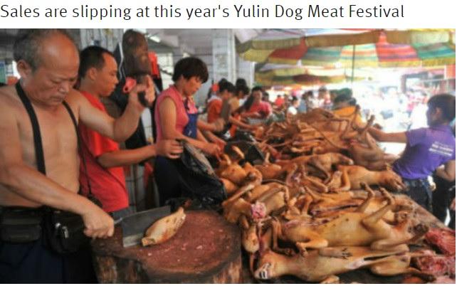 「犬肉祭」に政府の対応は…(出典:http://shanghaiist.com)