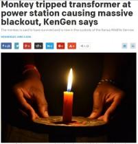 【海外発!Breaking News】ケニア全土で大停電 サルが水力発電所をシャットダウン!