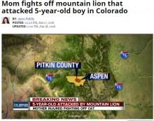 【海外発!Breaking News】5歳息子を襲った野生ライオンに勇敢なママ、体当たりで撃退(米)