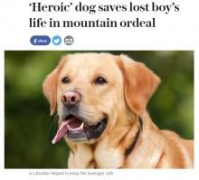 「ラブラドール犬が助けてくれた」 メキシコの岩山で遭難も44時間生き抜いた少年