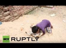 【海外発!Breaking News】野良犬の母乳を飲む少年 狂犬病感染の危険も(インド)<動画あり>