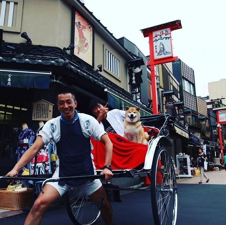 「浅草の街並みは素敵だけど一番素敵なのはまるちゃん君の横顔だよ」(出典:https://www.instagram.com/ozawakazuhiro)