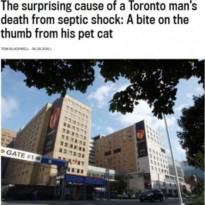 【海外発!Breaking News】愛猫に噛まれたカナダの男性 敗血症性ショックで死亡