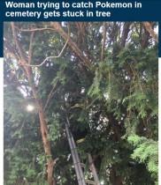 【海外発!Breaking News】ポケモンを追う女性、高い木に登りレスキュー隊が出動 「恥ずかしい」と謝罪(米)